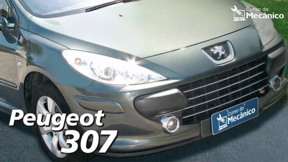 Mecânica da Transmissão MA - Peugeot 307 1.6 16V Flex