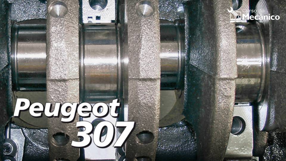 Motor TU5JP4 e seus componentes - Peugeot 307 1.6 16V Flex
